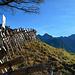 Am alten Alpweg wurden nicht nur die Trockenmauern freigelegt, sondern auch der Scheienzaun neu hergerichtet.