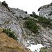 Das Drahtseil führt bis fast zum Gipfelplateau.
