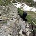 ein Berggänger beim Abstieg