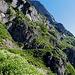 Der Weg geht auch durch hohe Bergblumen hindurch und auf Felsabsätzen in Richtung Schofboden.