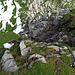und hier noch eine kleine Kletterpassage zum Hauptgipfel