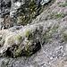 Si passa a ridosso della roccia