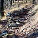 Particolare del bel sentiero, in parte lastricato, che sale da Canedo a Troggiano