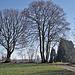 Bäume wie Scherenschnitte