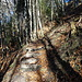 Treppen als Abstiegshilfen