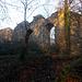 Burgruine Steinerburg