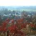 Im südlichen Bensheim unterhalb des Hemsberges