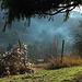 Rauch aus dem Hambacher Tal