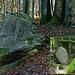 """Marions """"vermeintliches"""" und das echte Naturdenkmal Bügeleisen<br />(Kleines Bild vom Odenwaldklub Heppenheim e.V.)<br />"""