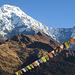 Aussicht von Tadapani auf die Annapurna South und Hiunchuli.