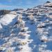 Eisig kaltes Weglein zum Steinmann bei der Badushütte