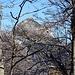 Durchblick zum Roßstein