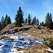 ...Platz und jeder kann seine Ruhe haben. So eine schöne Gipfelfläche, auf der sich, uns eingeschlossen, fünf Wanderer verteilen.<br />Wir freuen uns über diese winterliche Tour auf ein sonnengebadetes Ziel.