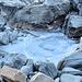 Eine gefrorene Pfütze auf dem Weg zum Annapurna Base Camp<br /><small>Foto von Elisabeth</small>