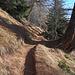 Bequemer Bergweg oberhalb Fuxtritt