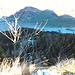 Aussicht vom Riesenkopf Richtung Nordosten mit Maiwand unten im Bild.
