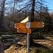 Piani della Galera Q1742. Vi arrivano 4 sentieri: da Pian Secco, da Ligunc, dalla Salei, e dall' Alpe Pesced