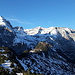Blick vom Sennenstein über die Latschen zum Ringelgebirge...