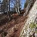 Schöne Wegführung bei den Felswändchen durch.