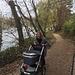 es geht hinauf und hinab am Rheinpfad entlang