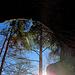Die Sonne zeigt sich von der besten  Seite :-)