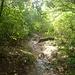 Trail (mud)