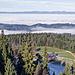 Aussicht vom Turm: über den Bantigehubel Blick zum Jura