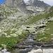 Lochbergbach (..und Zacken vor dem Winterstock)