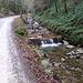 Ein wahres Wasserfalltakel bietet der Alpbach am Prinzenweg.