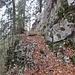 eine hübsche Passage der Felswand entlang - mit neuen Ketten versichert