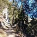 Der Weg verläuft ab Sonchaux östlich des Grats
