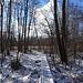 Das kleine Moor ist auch im Winter ein Highlight.