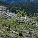 Tiefblick Richtung Hohlaub und Steiniwald. Durch diese schöne Landschaft führt die Abstiegsroute