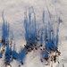Dürre Grashalme werfen zauberhafte Schatten auf den Schnee