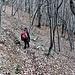 In discesa nella faggeta camminando su un enorme strato di foglie secche che nascondono sassi e buche.
