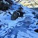 Capanna Albagno : cascata di ghiaccio che scende dal rifugio sul sentiero