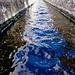 ... und manchmal schwimme ich in dem Kanal gegen den Strom und fühl mich dabei wunderbar und frisch ... echt :-))))