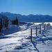 Schwyzer Alpen