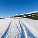 Autobahnmässige Spur beim Stächelegg. Als Schneeschuhgänger freut es mich, dass es mehrere Spuren gibt. Im Bild der auf der Karte benannte Stächeleggstall.