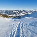 Gut gespurter Weg in Richtung Alp Schlund