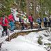 Wenig Schnee im steilen Wald