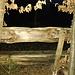 (148) Der Ausblick von BANK 53: bei Nacht können wir nicht sehen, daß wir nichts sehen, deswegen...