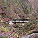 Il ponte che supera il torrente Dragonato.