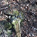 Ein einsamer Wasserhahn hat überlebt. Wer Durst hat, muss sich aber anderweitig versorgen.