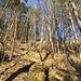 Blick zurück: Oben auf der Geländekrete verläuft der Coiffeurpfad. Das Gelände ist etwas steiler, als es auf dem Bild erscheint. Auch wenn der Abstieg pfadlos erfolgen muss: Mehr als T3 ist die kleine Route nicht.