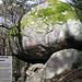 Naturdenkmal Solfelsen
