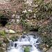Karstquelle vor Hasel. Möglicherweise ist das der Bach, der in der Erdmannshöhle fließt. Es gibt allerdings mehrere Karstquellen und Quelltöpfe zwischen Wehr und Hasel.