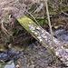 Rotten bridge no. 3