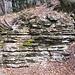 Le stratificazioni del Monte Generoso.