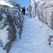 [u Stevo47] und die Gipfelbekanntschaft kommen nach